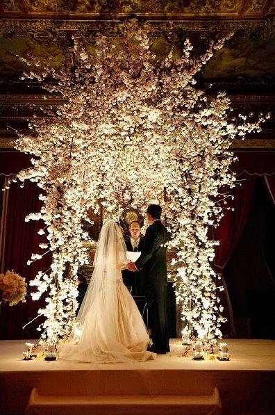 flowers and lighting