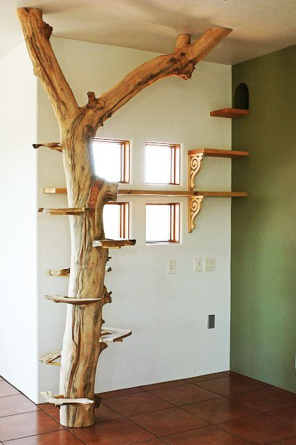 Una buena alternativa para decorar los ambientes y ofrecer entretenimiento a nuestras mascotas.