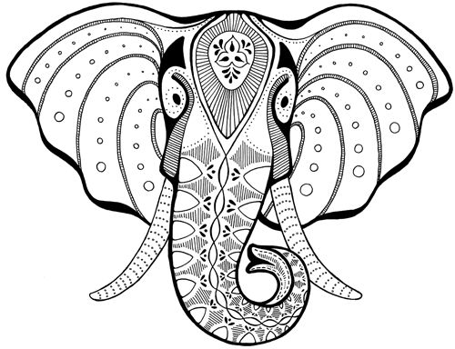Line Drawing Elephant Head : Best images about elefante on pinterest colorful