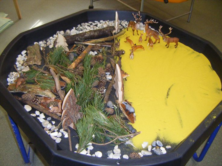 Wildlife sensory play on what looks to be a large plastic lid.
