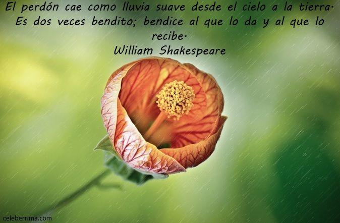frases celebres de william shakespeare sobre la vida en español - Buscar con Google