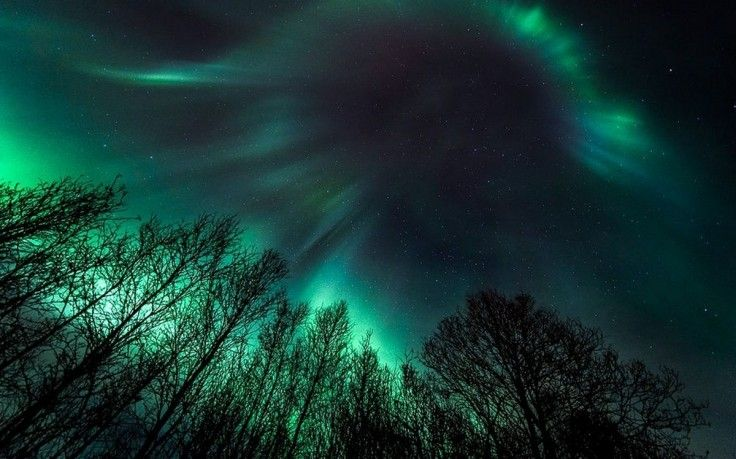 Nature Landscape Starry Night Aurora Boreal Trees Green Lights Sky Wallpapers Hd Desktop And Mob Aurora Boreal Northern Lights Wallpaper Green Scenery Hd wallpapers 1920x1080 light green