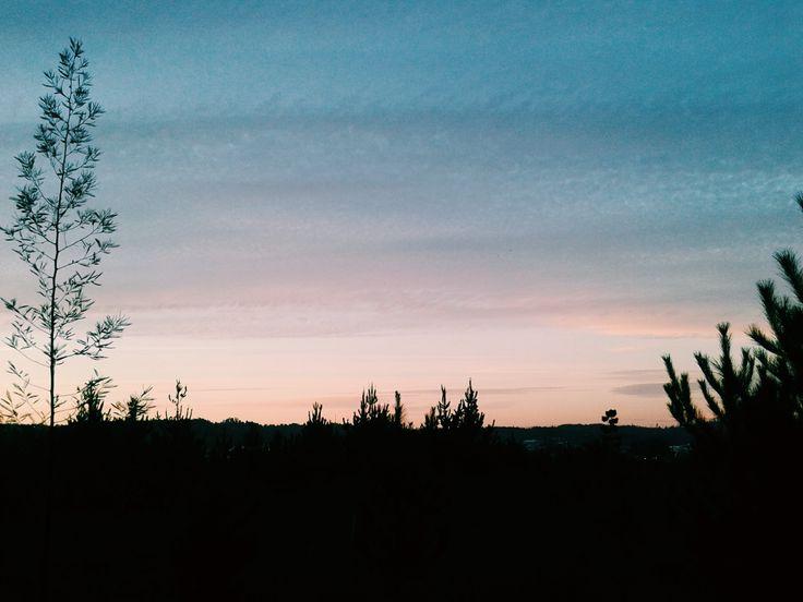 Sunset ❤💙💛