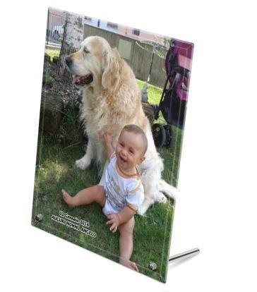 Come non fotografare un cagnolone vicino al proprio cucciolo di uomo?