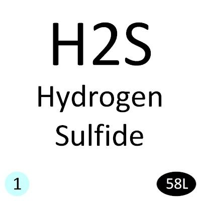 Hydrogen Sulfide (H2S) Calibration Gas - 10 PPM/N2