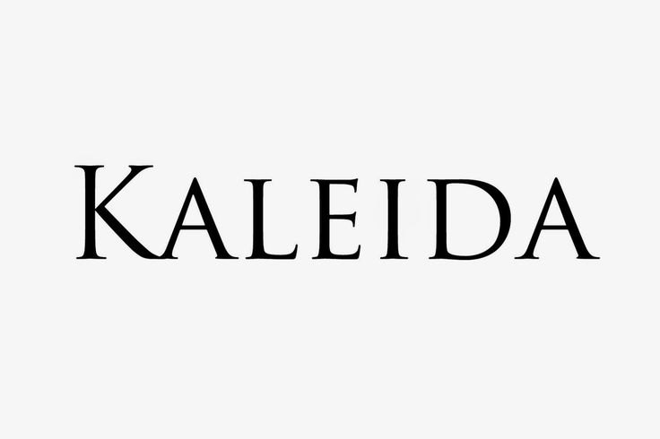 only music saves: Artist of the day : Kaleida.
