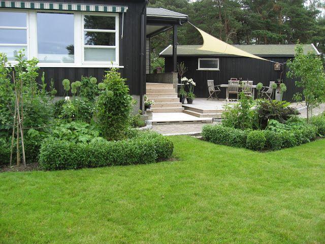 Furulunden: Hvordan forvandle et myrområde til en solrik terrasse | Furulunden