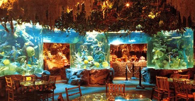 Rainforest Cafe Downtown Disney Ca Menu