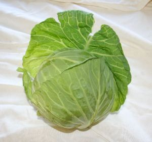 Can You Eat Fresh Garden Vegetables After They've Been Exposed to Frost – Homesteading and Hobby Farming