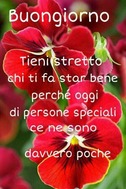 http://ift.tt/2trYpqe Frasi di buongiorno sms di buongiorno messaggi di buongiorno buongiorno per te bongiorno per whatsa