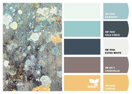 Paint Colors From Chip It By Sherwin Williams Maybe Gale Force Since