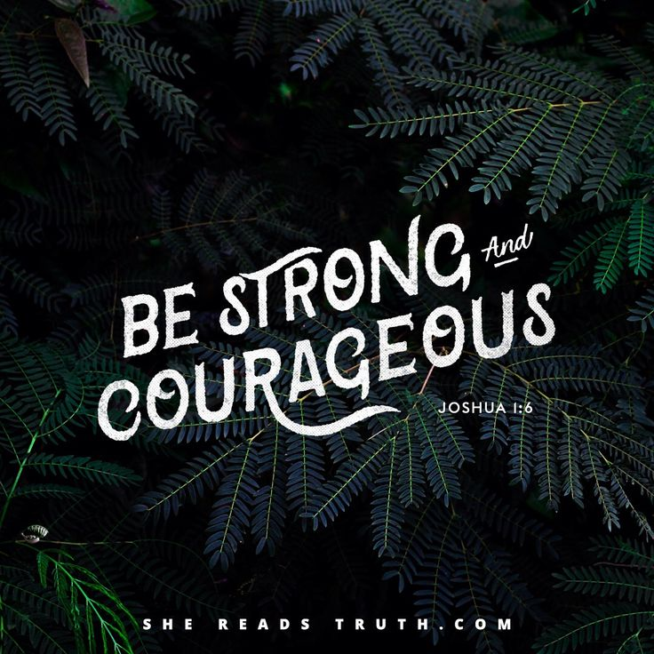 """#SheReadsTruth  When God says """"I will"""" and """"I have,"""" He will and He has.   Praise the Lord, His faithfulness fills in the cracks of our obedience! Praise the Lord, we can walk with courage and confidence into the certainty of a tomorrow where God will never leave us or forsake us. Praise the Lord that as co-heirs with Christ (Romans 8:17), every foot forward is another step on the journey of coming home to a place we've never been."""