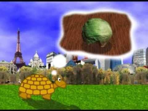 Muzikale tegenstellingen: traag = de schildpad uit het Carnaval der Dieren (Saint Saens)
