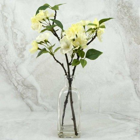 Cherry Blossom in Glass vase - Other Accessories - Accessories & Gifts - Gifts
