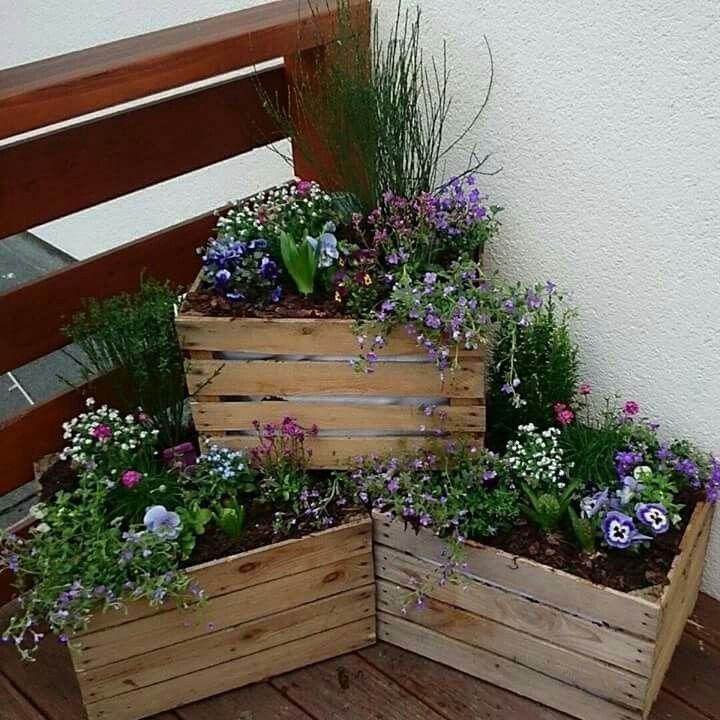 фото деревянных ящиков с цветами на участке показывают, как
