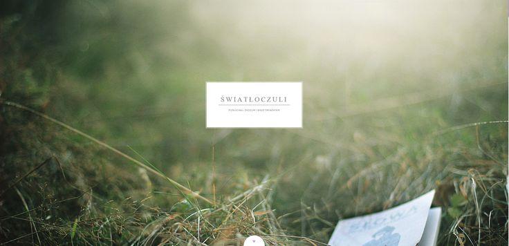 Profil internetowy (Tumblr) grupy fotograficznej Światłoczuli (Katowice).