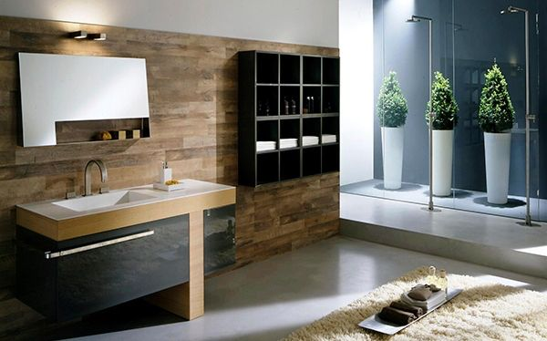 Image issue du site Web http://remodellingkitchens.com/wp-content/uploads/2014/12/design-element-contemporary-bathroom-vanity-set-with-frosted-top.jpg
