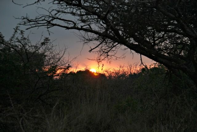 Another Zululand sunset