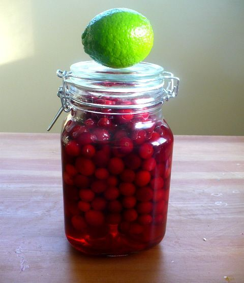 Cranberry lime infused vodka! My favorite things!