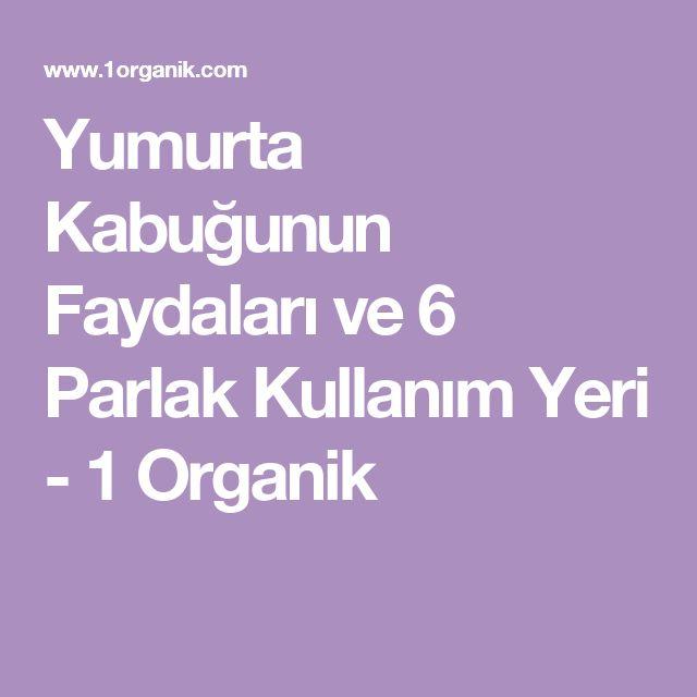 Yumurta Kabuğunun Faydaları ve 6 Parlak Kullanım Yeri - 1 Organik
