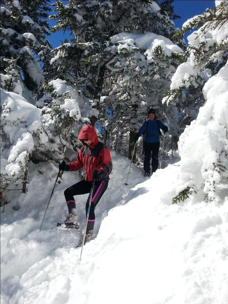 A very cool hike in Mount Sutton // Une belle randonnée au Mont Sutton avec le Club Plein Air 5 Saisons