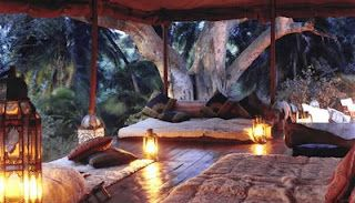 Luxury Camping... sign me up!
