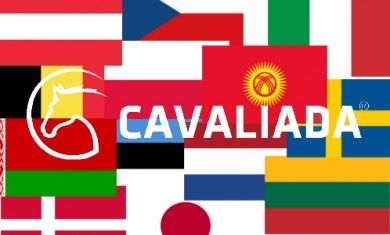 Flagi Cavaliada/Cavaliada Flags  rys. M.Sińska Koń Polski