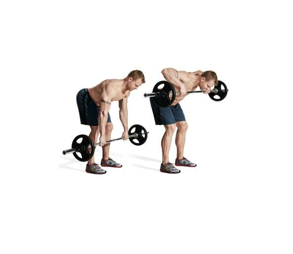 Free Weight Dumbbell Back Exercises: 17 Best Images About Workout Back On Pinterest