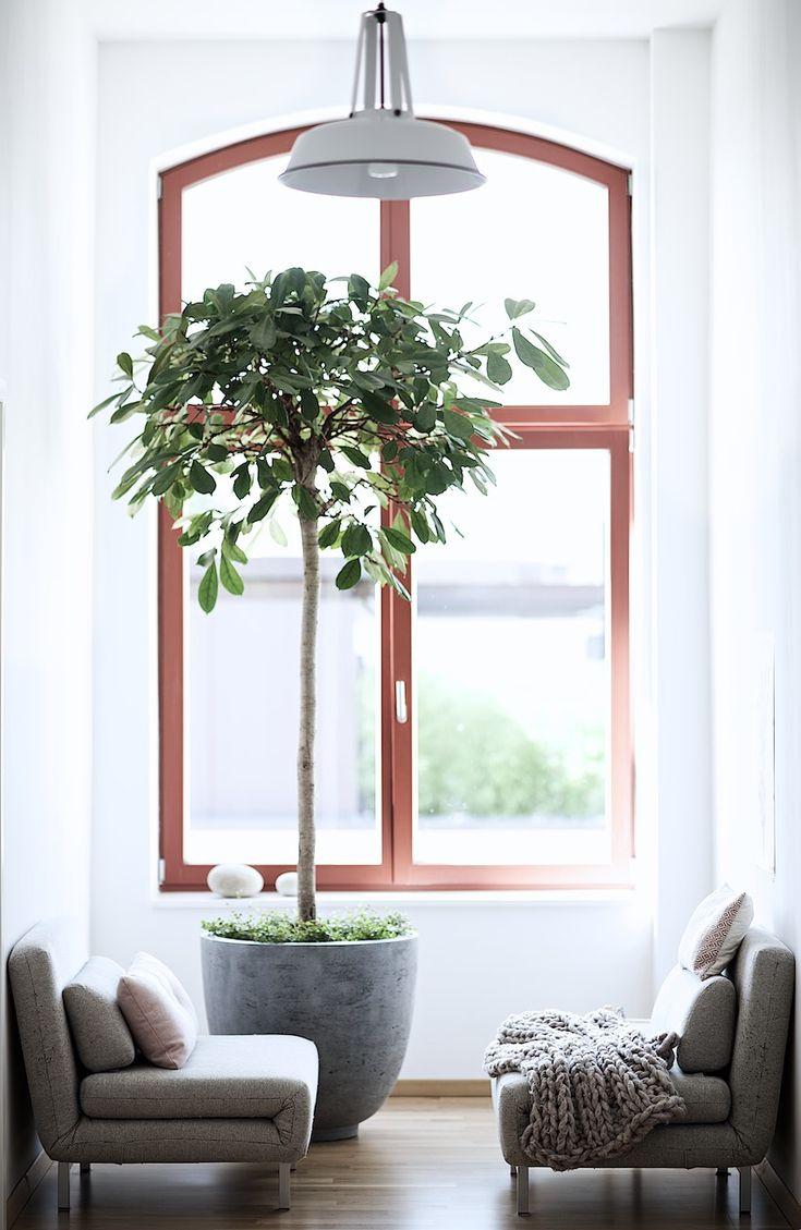 127 besten zzzzz bedroom bilder auf pinterest wohnen schlafzimmer und haus. Black Bedroom Furniture Sets. Home Design Ideas