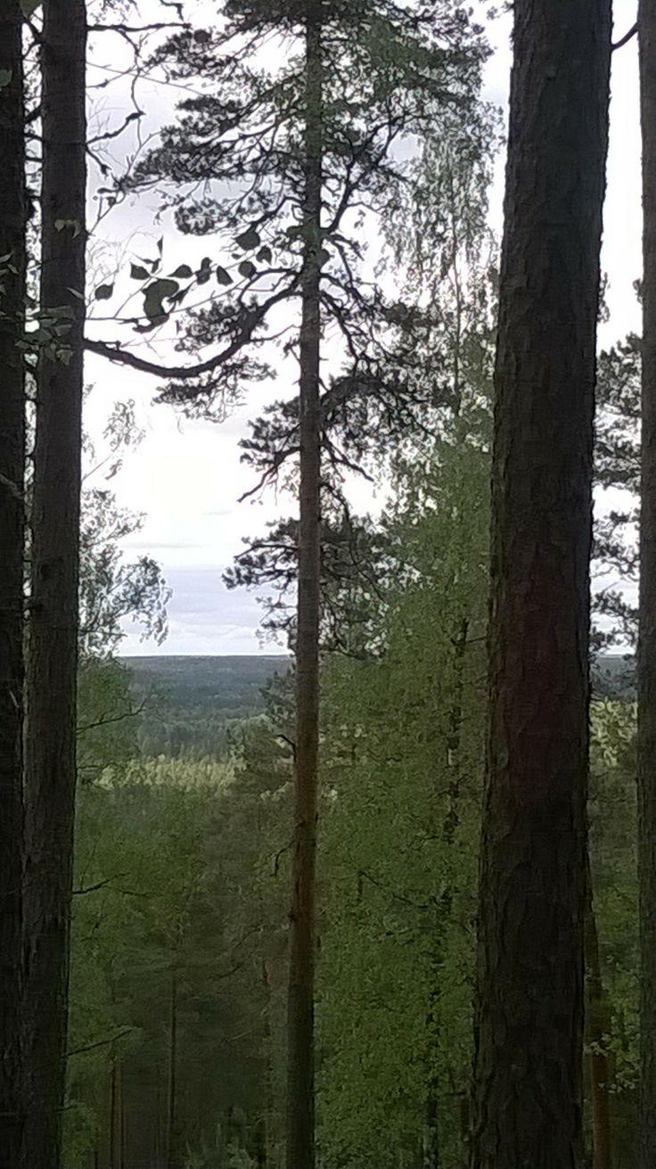 Särämäki, 163 meters above sea level.