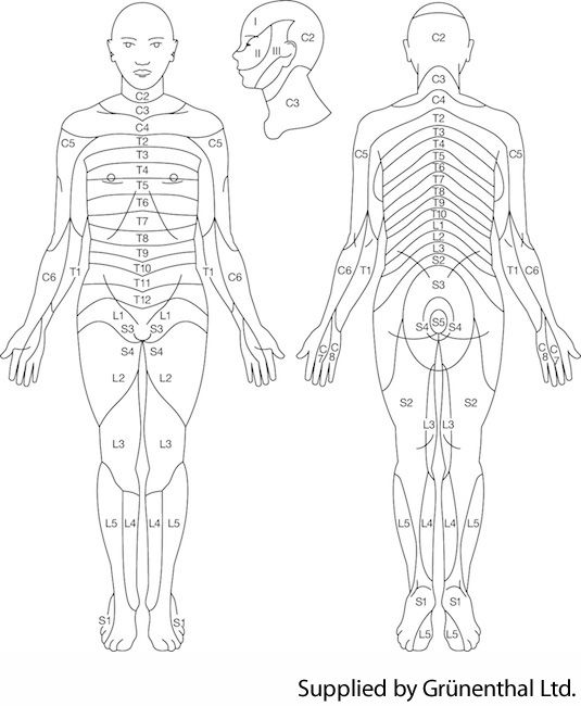 Pin on Body Systems