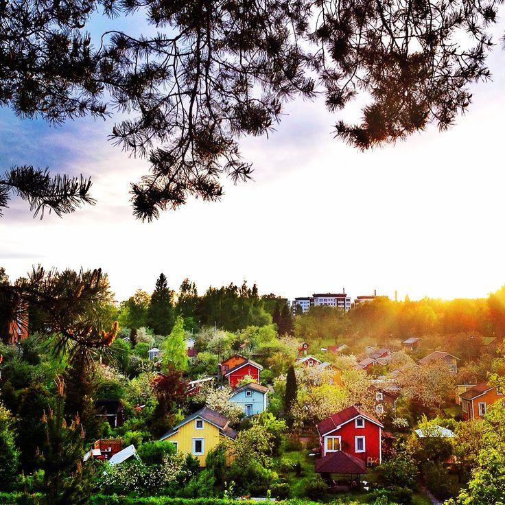 Litukka allotment garden in Tampere, Finland