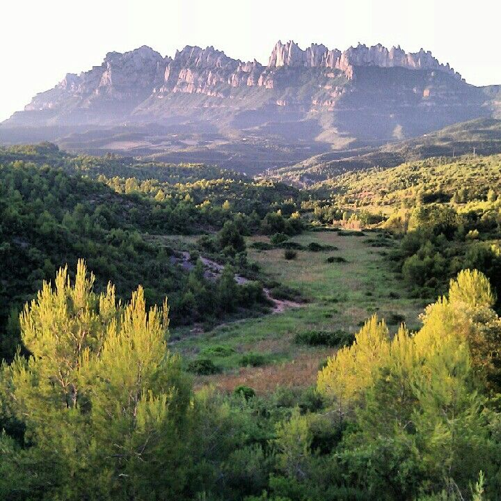 #Montserrat