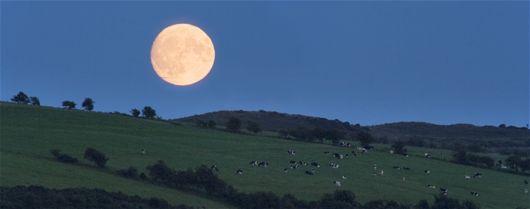 Odling med hjälp av månen - April,  Vår,  Trädgårdstips,  Livsstil