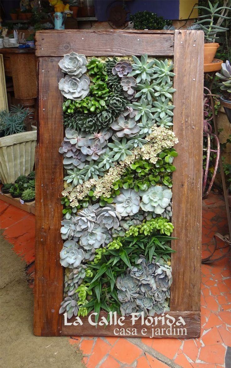 Jardim vertical   – Succulent decorations