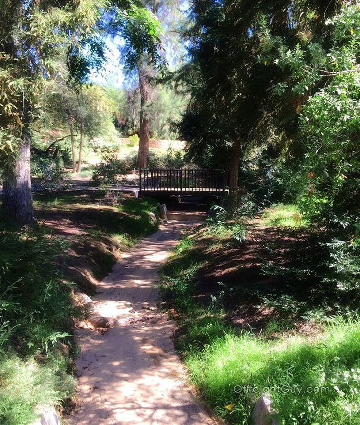 The grounds at the University of California Riverside Botanic Gardens were great for an impromptu wedding. Now that I can issue marriage…