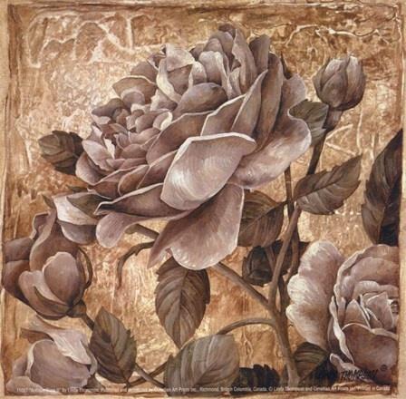 Antique Rose II by Linda Thompson art print