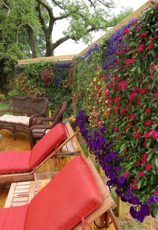 20 nagyszerű térhatároló kertbe, teraszra - Egy az Egyben