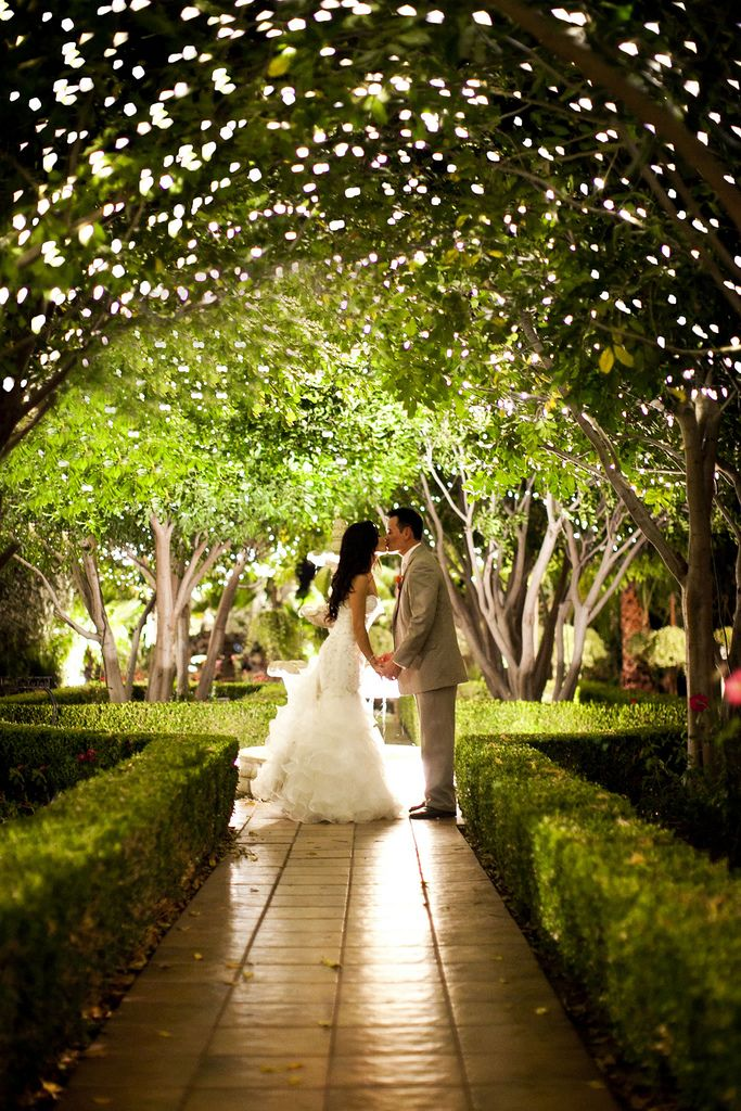 Night Time Twinkle Lights Photos At Villa De Amore