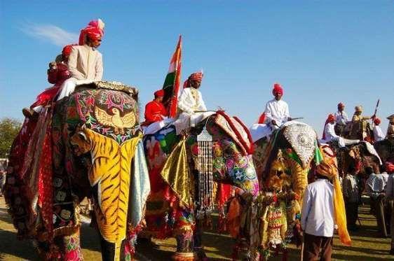 18.Festival del Elefante Jaipur, India - boredpanda