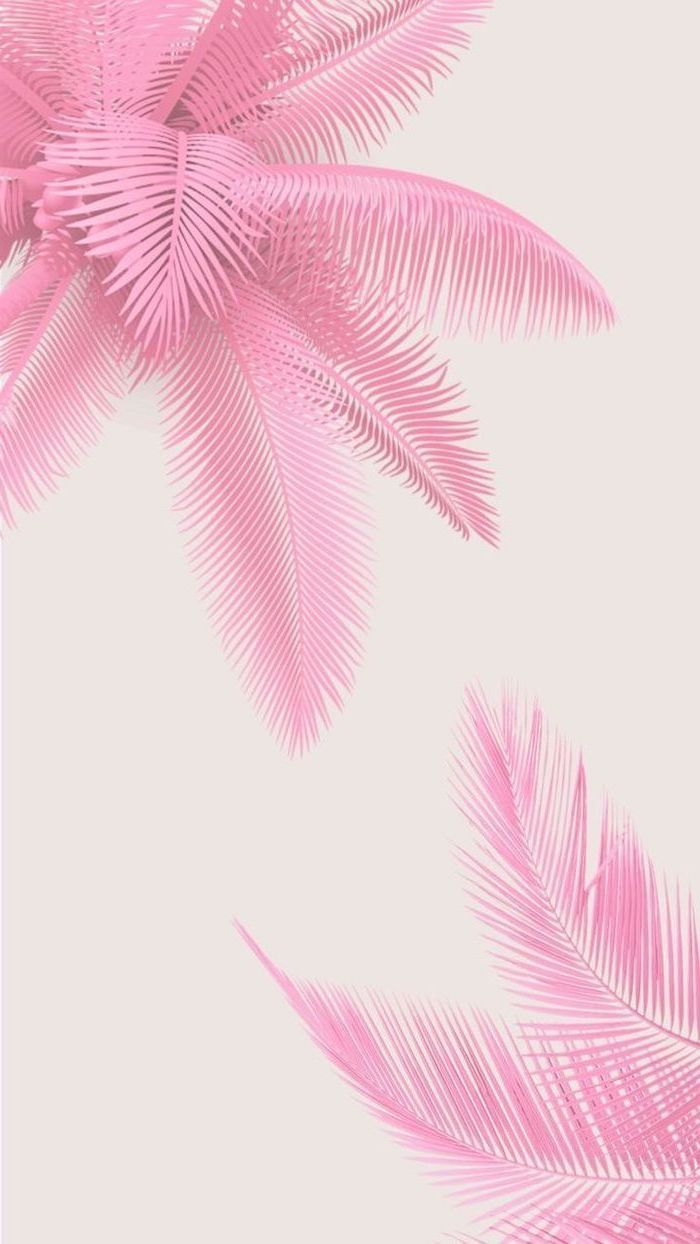 Pink Background Pink Palm Leaves Drawing Aesthetic Iphone Wallpaper In 2020 Cute Girl Wallpaper Pink Wallpaper Iphone Backgrounds Girly