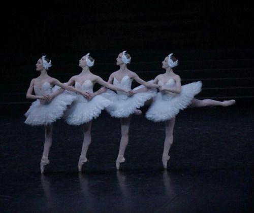 Alice Catonnet, Aubane Philbert, Severine Westermann, Eleonore Guerineau Le lac des cygnes Photo: Serge Itzkovich
