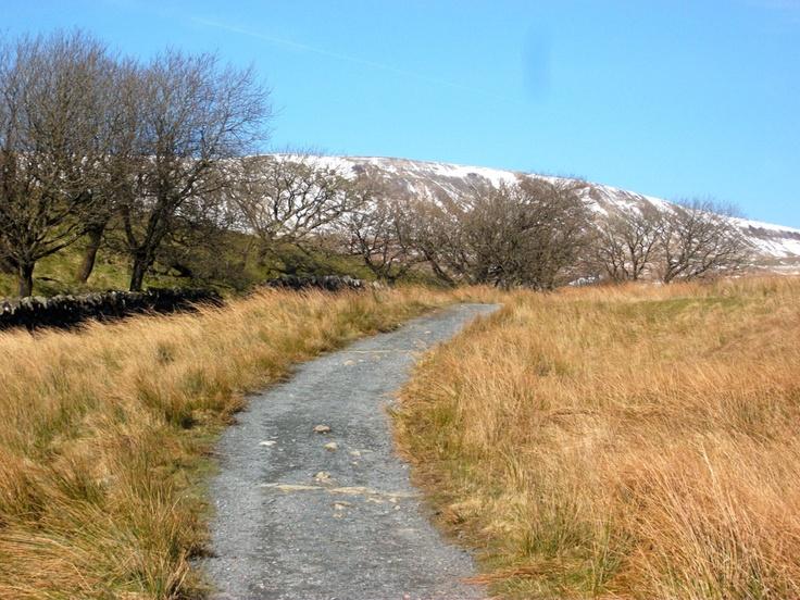 Whernside, Yorkshire Dales      Padiham Knitter