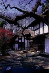 白洲次郎(Jiro Shirasu) 画像