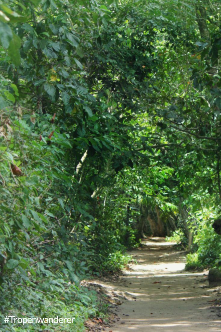 Das Dorf Cahuita sowie der gleichnamige Nationalpark an der Karibiksüdseite Costa Ricas hat einiges zu bieten. #CostaRica #PuraVida #Cahuita #Nationalpark #Reisen #Tropenwanderer