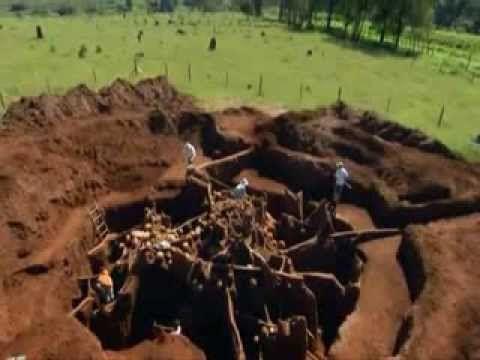 Giant Ant Colony Excavated