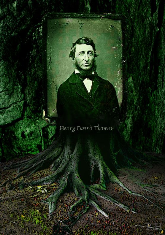 What are some websites that explain what Thoreau and Emerson believed in?