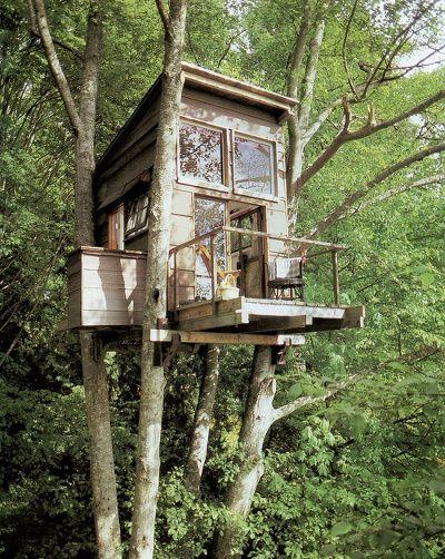 Je rêverais d'avoir une cabane dans un arbre. ..j'ai gardé mon âme d'enfant!
