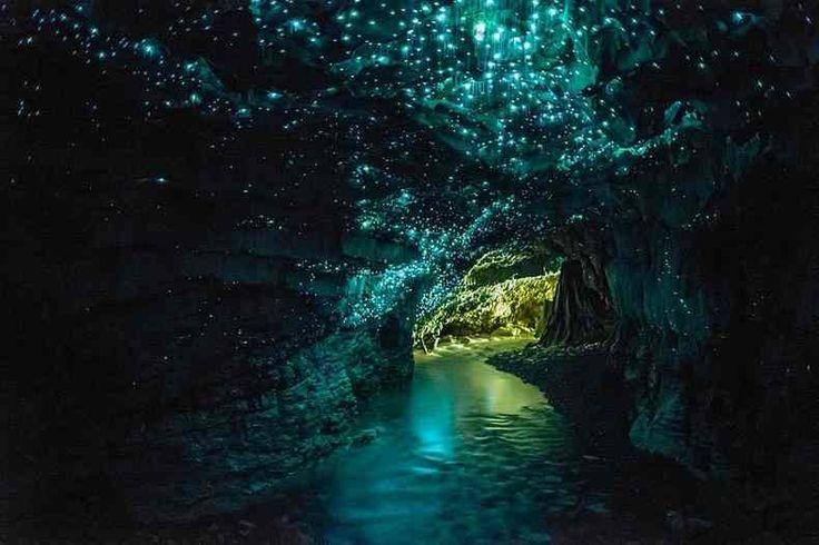 完全に『天空の城ラピュタ』の飛行石洞窟!!ニュージーランドに存在するヒカリキノコバエ(土ボタル)洞窟「ワイトモ鍾乳洞」が美しい!! | コモンポスト