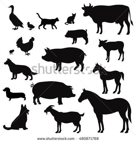 Vector farm animals silhouettes isolated on white.